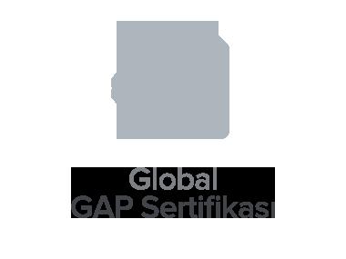 Global GAP Sertifikası